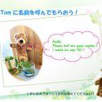トムに名前を呼んでもらおう!