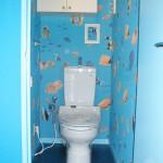 濃い青のトイレが無かったので、薄い水色のトイレです。壁紙の青より少し明るめの青で木目を塗りました。魚の壁紙で、賑やかな楽しいトイレに・・・